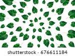 green leaves frame on white... | Shutterstock . vector #676611184