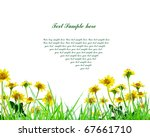 yellow flower and grass with... | Shutterstock . vector #67661710