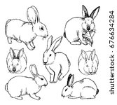 Stock vector hand drawn sketch set of rabbits isolated on white ink illustration of rabbits sitting in various 676634284