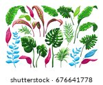tropical palm leaves. set of... | Shutterstock .eps vector #676641778