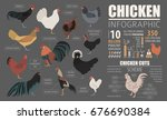 poultry farming infographic... | Shutterstock .eps vector #676690384