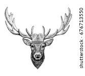 deer wild animal wearing cowboy ... | Shutterstock . vector #676713550