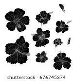 black and white hibiscus vector ... | Shutterstock .eps vector #676745374