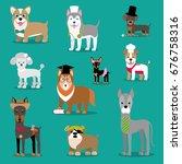vector illustration of a dog.... | Shutterstock .eps vector #676758316