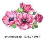 pink anemones  beautiful... | Shutterstock . vector #676771954