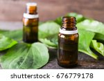 essential oil of plantain | Shutterstock . vector #676779178