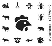 set of 12 editable zoology...