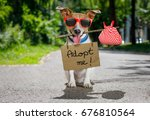 Small photo of lost and homeless jack russell dog with cardboard hanging around neck, abandoned at the street, waiting to be adopted