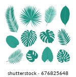 big set of tropical leaves....