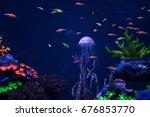 Beautiful Jellyfish Floating...
