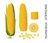 vector illustration of corn ... | Shutterstock .eps vector #676941463