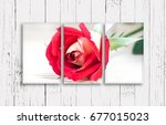 three frames set with beautiful ... | Shutterstock . vector #677015023