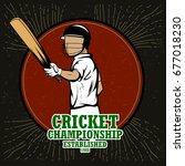 batsman sports player playing...   Shutterstock .eps vector #677018230