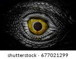 halloween's eye  eyes of horror ... | Shutterstock . vector #677021299
