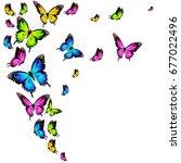 beautiful color butterflies set ... | Shutterstock .eps vector #677022496