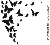 black butterfly  isolated on a...   Shutterstock .eps vector #677022604