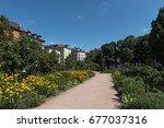 The Bethmannpark In Frankfurt...