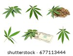 collage of weed leaves  seeds... | Shutterstock . vector #677113444