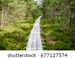 Wooden Footpath In Swamp With...