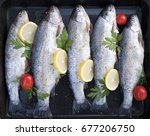 trout  with lemon and tomatoes... | Shutterstock . vector #677206750