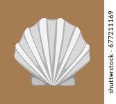 shell   Shutterstock . vector #677211169