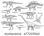 Dinosaur Collection ...