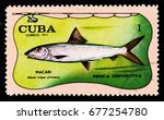 Small photo of MOSCOW, RUSSIA - JUNE 26, 2017: A stamp printed in Cuba shows fish Macabi albula vulpes (Linneo), circa 1971