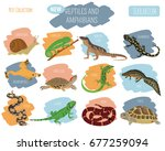 pet reptiles and amphibians... | Shutterstock .eps vector #677259094