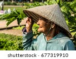old vietnamese lady in color  ...   Shutterstock . vector #677319910