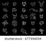 the illustration   set of signs ... | Shutterstock . vector #677346034