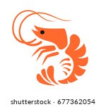 vector color prawn icon on... | Shutterstock .eps vector #677362054