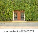Wooden Doors In The Green Ivy...
