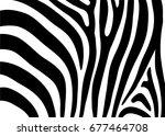 zebra pattern | Shutterstock .eps vector #677464708