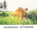 transplant rice seedlings.   Shutterstock . vector #677504998
