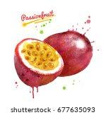 watercolor illustration of...   Shutterstock . vector #677635093