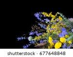 bouquet bunch of fresh lavender ... | Shutterstock . vector #677648848