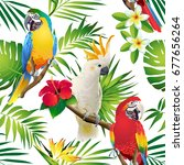 seamless pattern of parrots... | Shutterstock .eps vector #677656264