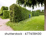 man is cutting trees in the... | Shutterstock . vector #677658430