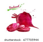 watercolor hand drawn... | Shutterstock . vector #677705944