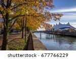 golden trees along baltimore... | Shutterstock . vector #677766229