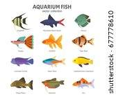 aquarium freshwater fish set.... | Shutterstock .eps vector #677778610