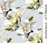 white flowers of lily  madonna... | Shutterstock .eps vector #677786026