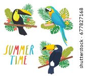 Stock vector set of three illustrations of parrot and toucans with tropical leaves on white background can be 677827168
