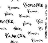 camellia flower calligraphy...   Shutterstock .eps vector #677847400