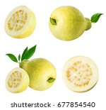 guava isolated on white... | Shutterstock . vector #677854540