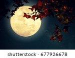 beautiful autumn fantasy  ... | Shutterstock . vector #677926678