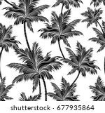 black and white tropical palm... | Shutterstock .eps vector #677935864