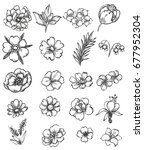 flower set | Shutterstock . vector #677952304