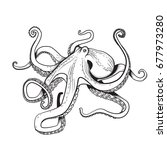 adult coloring page octopus... | Shutterstock . vector #677973280