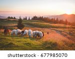 nature  sunset in the mountains ... | Shutterstock . vector #677985070